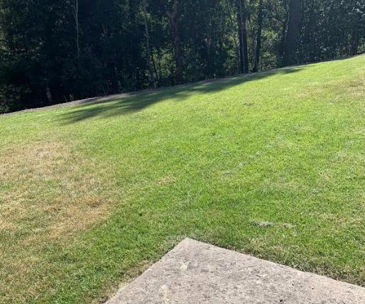 Mendocino Lawn Care