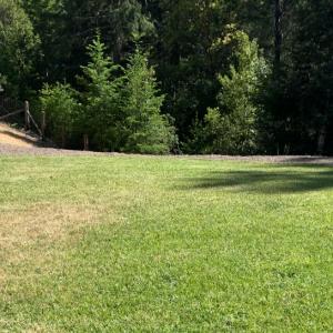 Lawn Care Services Mendocino County | Alex's Gardening Service
